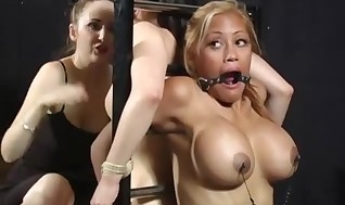 Fat hooters fucksluts bounded and nailed by fucktoys