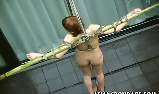 Japanese redhead crucified and tantalized with water